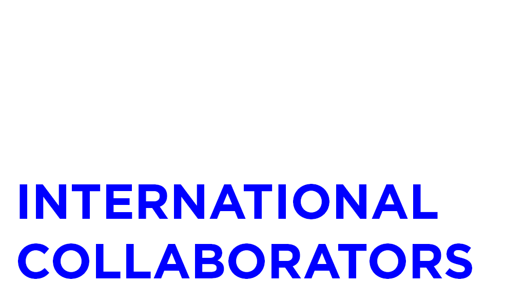 International Collaborators